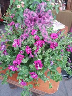 Mothers day hanging basket