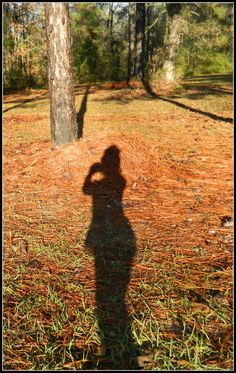 The story is many times rests with the taker of the photograph...the shadow in the picture.