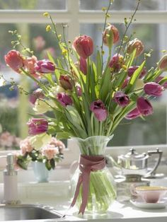"pretty  Love tulips.  They say, ""Spring is at last, here""."