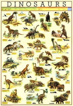 Poster: Dinosaurs : 38x27in