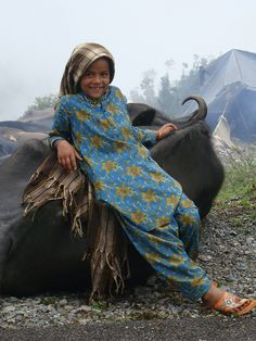 Child resting on her favourite buffalo at a rest stop beside the road on the Gujjar's semi-annual trek from the Himalayan highlands to Dehradun. In September, part of a group of the Gujjar semi-nomadic tribe is on the move for a month from the high mountainous pastures of Uttarakashi to Dehradun river valley outside the state capital of Uttarakhand, in northern India (photo credit: ILRI/Susan MacMillan).