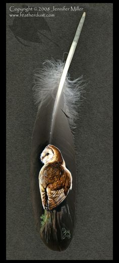 Barn Owl painted feather by Nambroth on deviantART