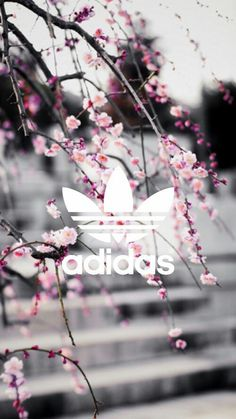Imagem de adidas, wallpaper, and pink