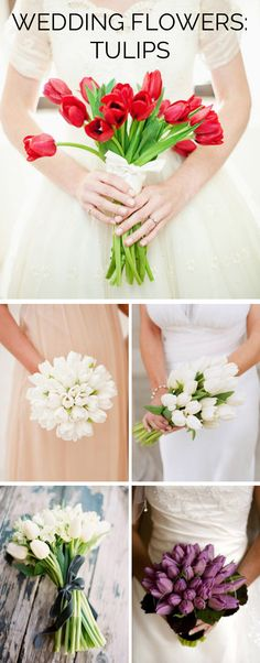 Wedding Flowers: Tulips | SouthBound Bride www.southboundbride.com/wedding-flowers-tulips  Credits: Hy-Vee/Dixie Pixel // Martha Stewart // Project Wedding // Jose Villa // House of Elliott Flowers