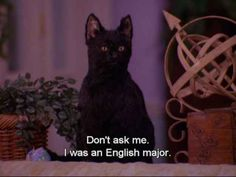 """Allow your college experiences to inform your post-grad life. 