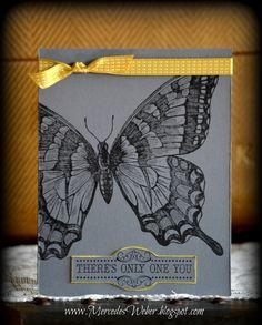 http://2.bp.blogspot.com/-IgNRETTI8bQ/UOBsiU4j84I/AAAAAAAACmw/0cC5Sxa9LYk/s1600/Gray+Butterfly.jpg