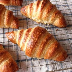 homemade Croissants, from scratch If we ever end of in some croissant-less village in germany, I may actually attempt these. Until then, I'm just going to pin this and be thankful that I'm still in Berlin. :)**