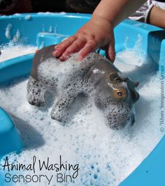 Animals Washing Sensory Play Activity for toddlers! This is a great sensory bin for those warm summer days!