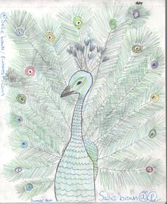 Peacock drawing w/ watercolor pencils.  *Sallie Brown drawings* #salliebrownart