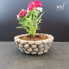 Diy Crafts For Home Decor, Diy Crafts Hacks, Diy Arts And Crafts, Diy Cement Planters, Cement Flower Pots, Cement Art, Concrete Crafts, Fleurs Diy, Plant Decor