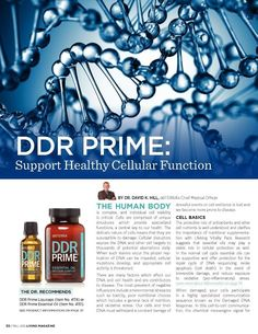 "A friend of mine who has two sons with Down Syndrome told me about DDR Prime oil blend, and how it helps with speech in children. Speech?  I got a couple of kids who need that, stashed it in my cart without much waiting.  SPEECH! ""Just one drop along their spines in the morning."" Done,…"