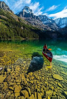 Crystal clear water of Lake O'Hara, Yoho National Park, BC, Canada Photography by ©️️ Jonathan Zhang earthofficial is part of Beautiful places - Yoho National Park, Parc National, Canada National Parks, Glacier National Park Canada, National Park Camping, Jasper National Park, Parks Canada, Oh The Places You'll Go, Places To Travel