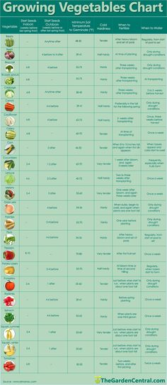 when to sprout, plant, water, and fertilize...also tracks hardiness and min. ger...#fertilizealso #ger #hardiness #min #plant #sprout #tracks #water Hydroponic Gardening, Organic Gardening, Container Gardening, Gardening Tips, Vegetable Gardening, Veggie Gardens, Urban Gardening, Planting Vegetables, Texas Gardening