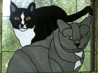 Black & Gray Cat