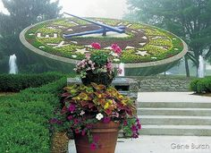 The floral clock at the Kentucky state capital in Frankfort. Frankfort Kentucky, Floral Clock, Places In America, My Old Kentucky Home, Beautiful Horses, Where To Go, Old And New, Stuff To Do, This Is Us