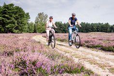 Reiseplaza: Heide-Heilbad - Entspannter Urlaub in Bad Bevensen (Foto: epr/Bad Bevensen Marketing/Markus Tiemann) Bad Bevensen, Bicycle, Outdoor, Wine Festival, Lilac Color, Outdoors, Bike, Bicycle Kick, Bicycles