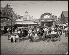 The Goat Carriages, Coney Island, N.Y. photographed by the Detroit Publishing Company in 1904 on 8x10 glass plate negative.