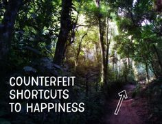 Counterfeit Shortcuts to Happiness - Growing 4 Life