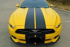 Plain Rally stripes Stripe Graphics Decals All 2015 - 2019 Mustang GT LX Cobra Ecoboost New Mustang, 2015 Mustang, Ford Mustang Shelby Gt500, Mustang Cobra, Mustang Iphone Wallpaper, Phone Wallpapers, Rear Window Decals, Ford Classic Cars, 2019 Ford