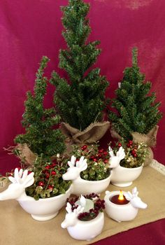 Use these Reindeer decor items to help decorate your house for Christmas or give as a wonderful gift. Reindeer Decorations, Christmas Decorations, Decorative Items, Planter Pots, Dishes, Decorating, Plants, Gifts, House
