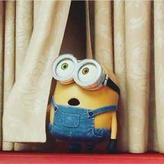 What a cute reaction😘😍 Minions Bob, Minions Cartoon, Cute Minions, Minions Despicable Me, Cartoon Fan, Funny Minion, Minions 2014, Funny Jokes, Minion Humour