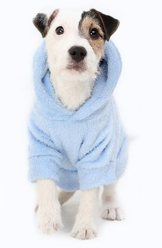 Keep your pooch extra warm and cuddly in this super cute dog hoodie!