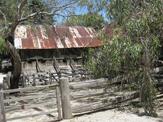 woolshed & stock run, Emu Bottom Homestead