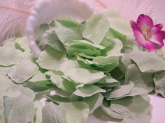 Hey, I found this really awesome Etsy listing at https://www.etsy.com/listing/165587645/200-rose-petals-artifical-petals-mint