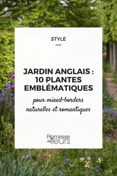 English Garden: 10 iconic plants to compose mixed natural borders Gardening For Beginners, Gardening Tips, Fairy Gardening, Gardening Photography, Garden Drawing, Garden Quotes, Flowering Shrubs, Pallets Garden, Plantar