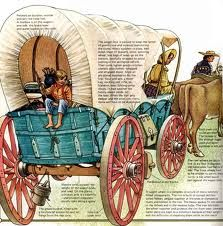 Covered wagons helped pioneers settle much of the United States.