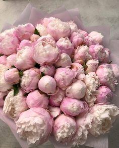 61 ideas vintage pink bouquet ana rosa for 2019 Luxury Flowers, My Flower, Fresh Flowers, Flower Pots, Beautiful Flowers, Flower Aesthetic, Pink Peonies, Purple Roses, Planting Flowers