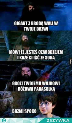 Memy z HP # Losowo # amreading # books # wattpad Harry Potter Mems, Harry Potter Cast, Harry Potter Movies, Harry Potter Fandom, Wtf Funny, Funny Memes, Hilarious, Jokes, Harry Potter Funny Pictures