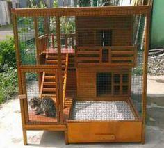 40 Desain Rumah Kucing Dari Kayu Minimalis