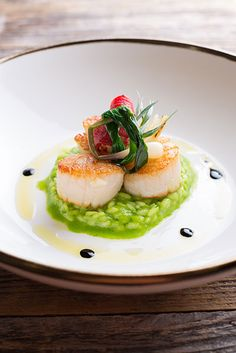 86 best scallops images in 2019 food plating gourmet recipes food presentation - Modern french cuisine recipes ...