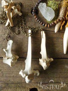 Medium Deer Vertebra  custom made necklace bone jewelry by Osteal, $20.00