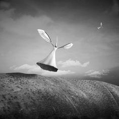Dariusz Klimczak photography