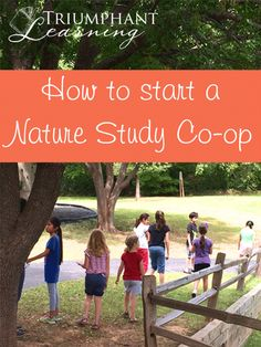 There are many benefits of a nature study co-op. Read about these benefits and how to start a nature study co-op.