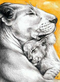lioness hugging a cub. I like the lioness, not ready for the cub part. Tattoo Mama, Cubs Tattoo, Tattoo For Son, Lioness And Cub Tattoo, Lioness And Cubs, Baby Tattoos, Flower Tattoos, Tattoo Mere Fille, Mother Son Tattoos