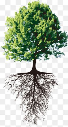 Blossom Tree Tattoo, Tree Tattoo Men, Tree Tattoo Designs, Blossom Trees, Tree Of Life Artwork, Tree Art, Roots Drawing, Infinity Art, Graphic Design Brochure