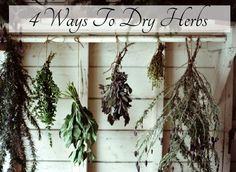 How To Preserve Your Flowers By Drying Them