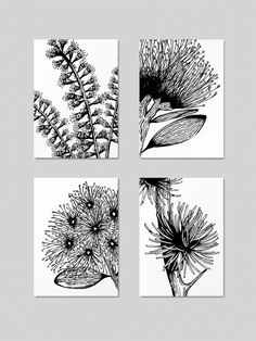 Woodcut Sketches / Drawings of Various Plants Drawing Sketches, Drawings, Illustrations, Flowers, Plants, Design, Florals, Sketches, Illustration