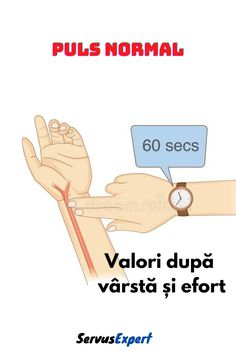 Health And Fitness Expo, Human Anatomy, Dory, Infographic, Memes, Nursing, Projects, House, Fashion