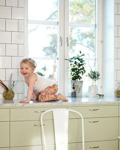 Slett grønt kjøkken - Solid | Drømmekjøkkenet