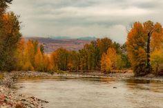 Beautiful fall foliage trip from Sammamish.