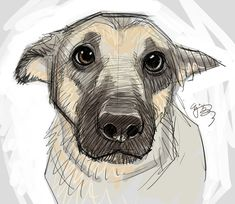 Puppy-eyes by EJ-Su on DeviantArt ★ Find more at . Puppy-eyes by EJ-Su on DeviantArt ★ Find more at . Drawing Sketches, Cool Drawings, Drawing Tips, Drawing Drawing, Drawings Of Dogs, Sketching, Cute Dog Drawing, Bear Drawing, Puppy Drawings