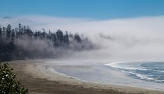 Misty Forest at Florencia Bay Beach | Flickr - Photo Sharing!