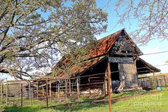 An Old Weathered Barn Photograph by Kathy White