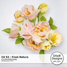CU 52 - From Nature :: COMMERCIAL USE :: Memory Scraps