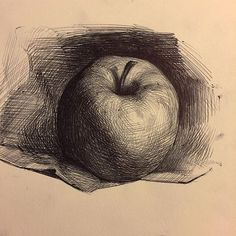 52 Fruit And Vegetable Drawing Ideas - Art Pencil Drawings, Drawing Sketches, Art Drawings, Drawing Ideas, Charcoal Drawings, Academic Drawing, Academic Art, Pencil Shading Techniques, Vegetable Drawing