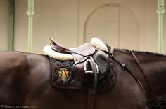 Gucci equestrian speaks to me on a deep emotional level Equestrian Boots, Equestrian Outfits, Equestrian Style, Equestrian Fashion, Riding Hats, Horse Riding, Riding Clothes, Riding Gear, Horse Photography